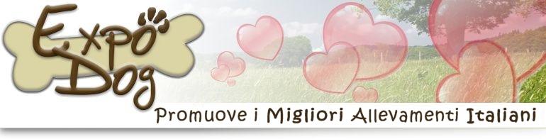 Expodog connette gli allevamenti italiani a chi � in cerca di un cucciolo. Trova in tuo cucciolo con Expodog