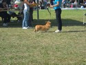 kali at her first show