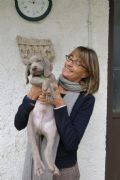 cucciolo weimaraner-piemonte-cuccioli-donatella-buroni-13770