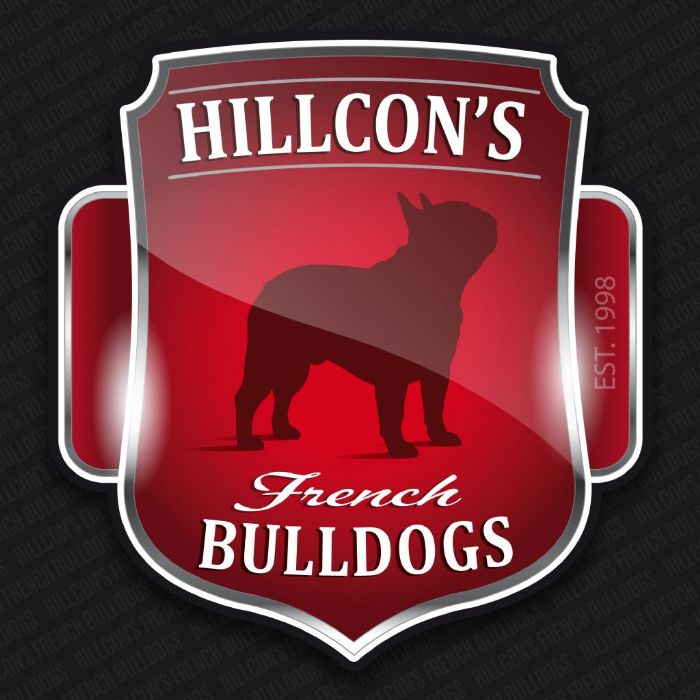 Hillcon s bulldog