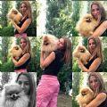 cucciolo spitz-tedesco-emilia-allevamento-italiano-emildog-22782