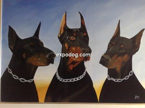 Dobermann cuccioli in vendita