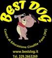 BEST DOG Centro Educazione Cinofila